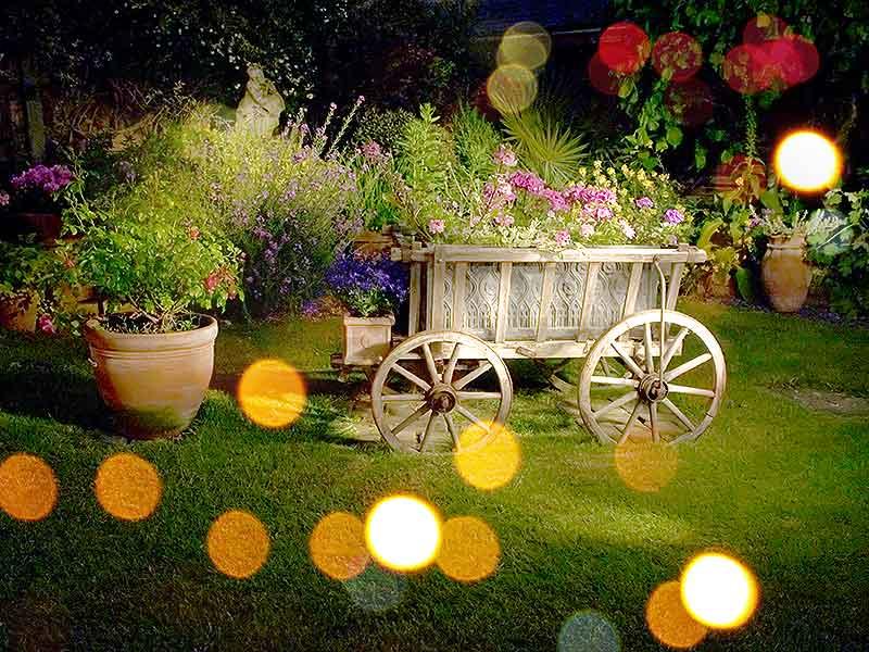 Teelieu0027s Fairy Garden