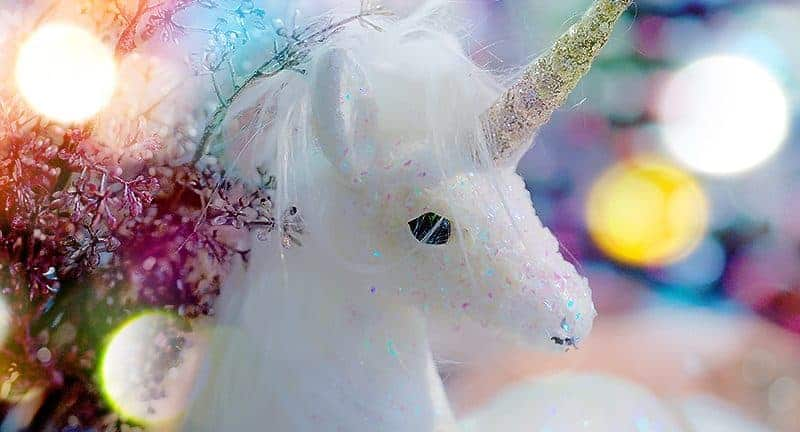 FG-Aug-2-2019-featured-photo-unicorn