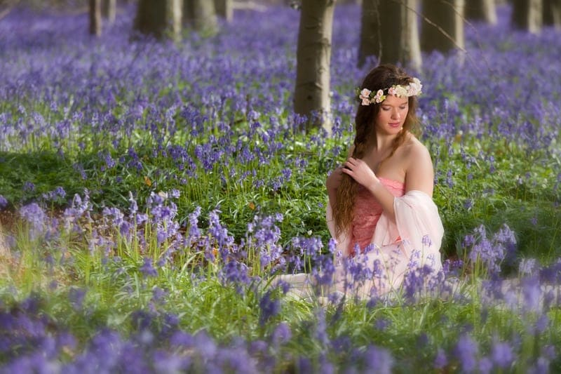 Spring in Fairy Land