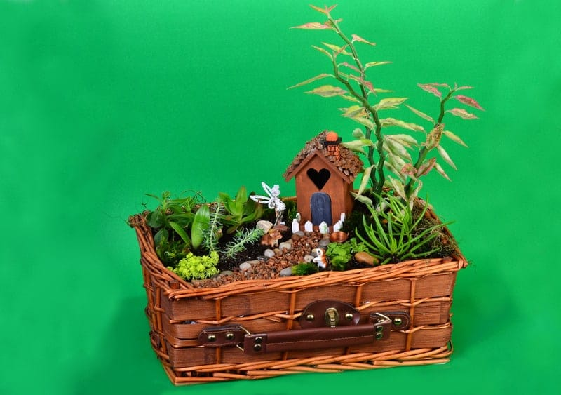Imaginative Fairy Garden Planters