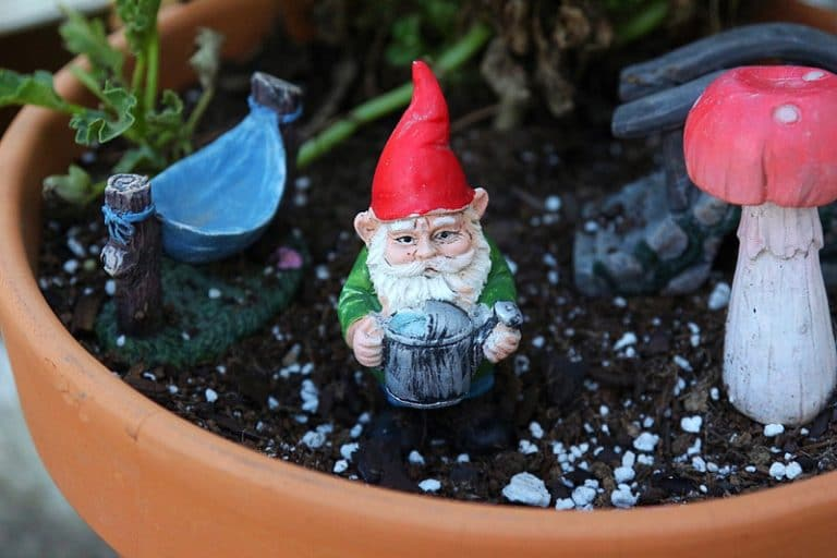 Gnome Themed Fairy Gardens