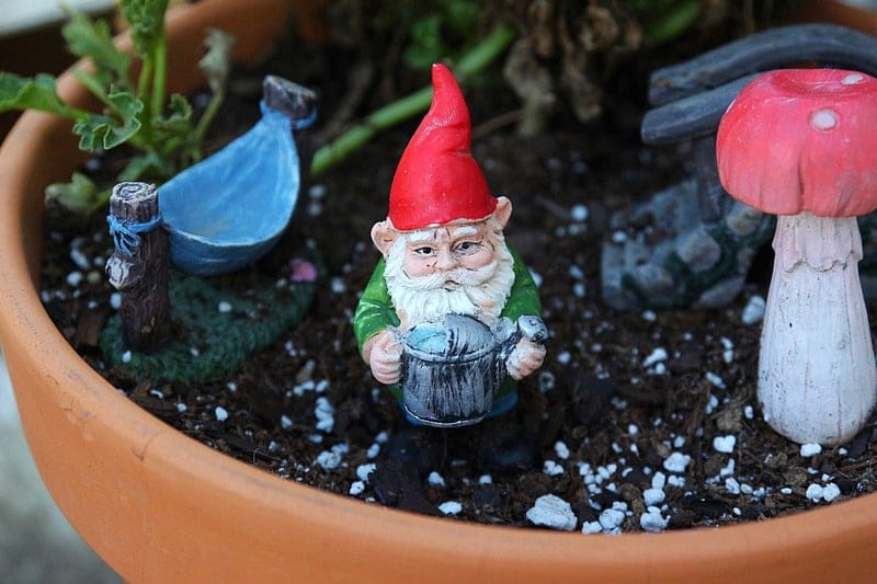 Gnome Themed Fairy Gardens