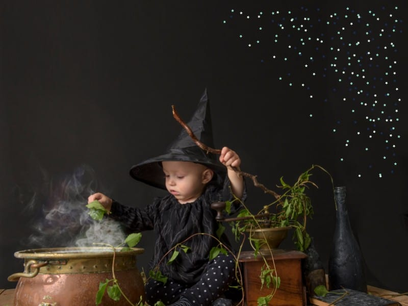 How to Create a Magical Halloween Fairy Garden