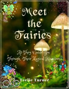Meet The Fairies
