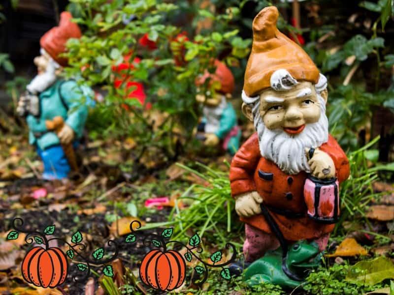 Create a Halloween Garden for the Gnomes