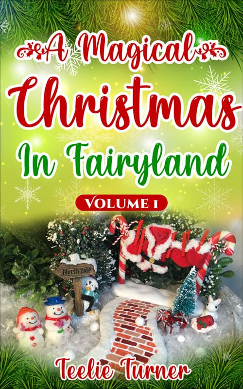 Christmas In Fairyland