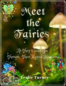 Meet The Fairy