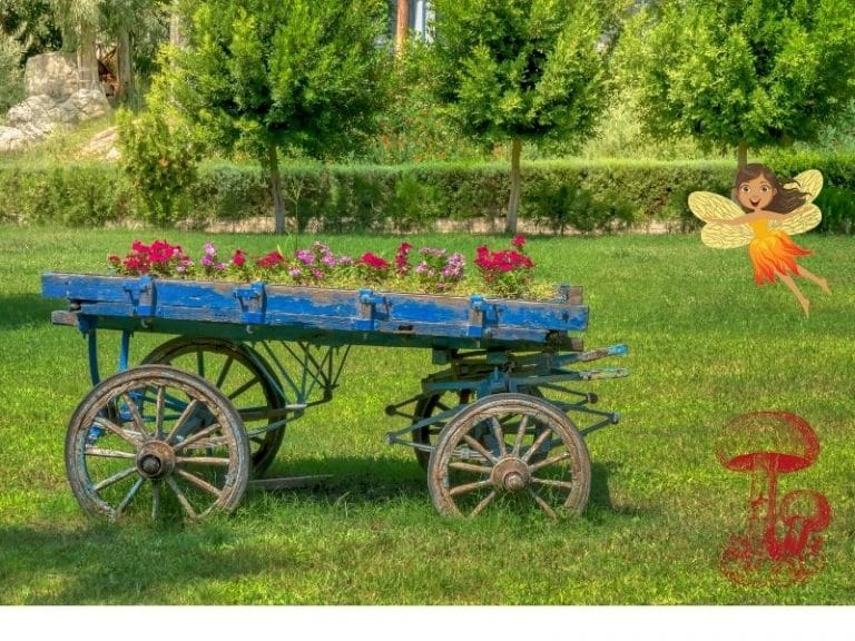 fairy carts